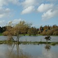 Floods at Watermead Park, Watermead Park, Birstall, Leicester, 24 October 2004